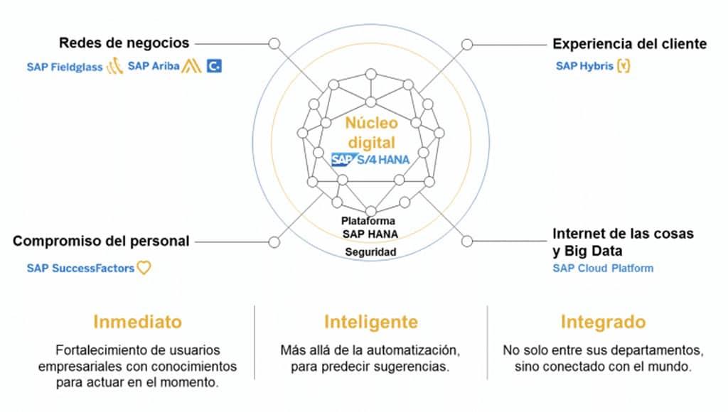 SAP s4hana cloud